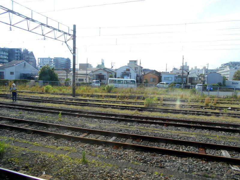 横浜Y156記念列車583系2015その3-5314