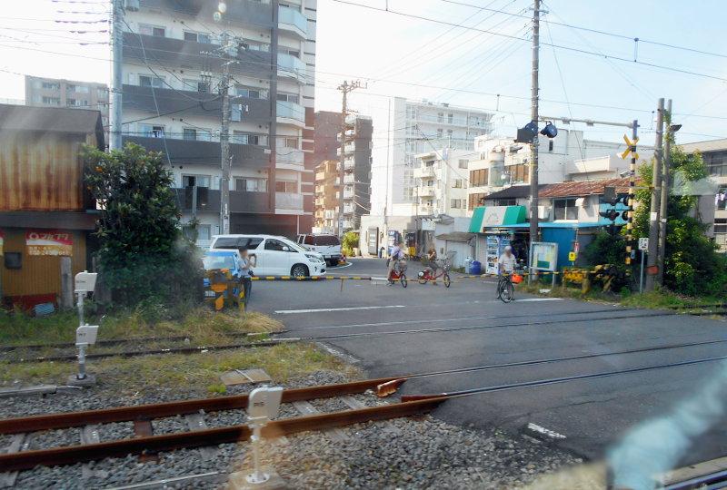 横浜Y156記念列車583系2015その3-5315