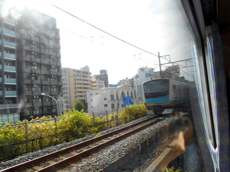 横浜Y156記念列車583系2015その3-5319