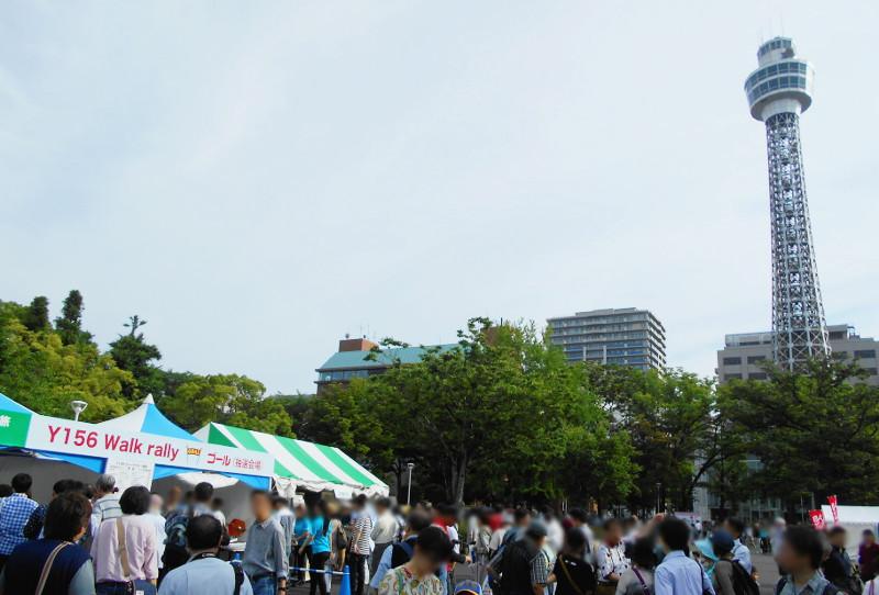 横浜Y156記念列車583系2015その3-5329