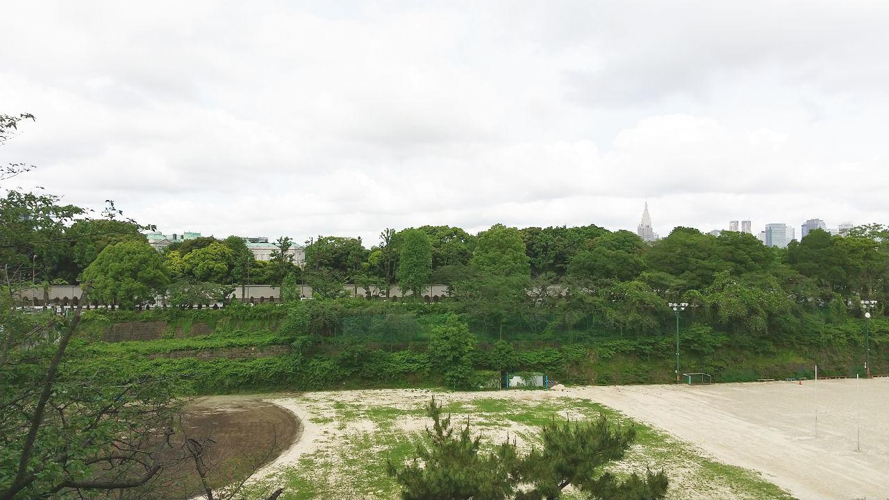 東京都心の森2020春-1001
