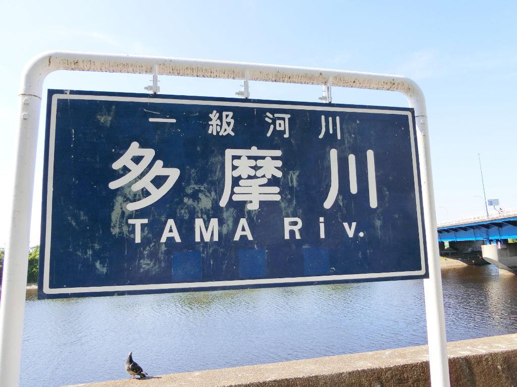 京浜急行大師線を歩く。その5・港町駅から川崎駅へ2018夏-1519