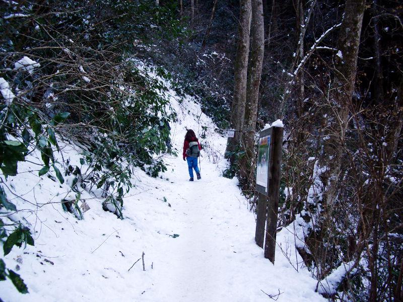 東京・冬の高尾山2013-7011