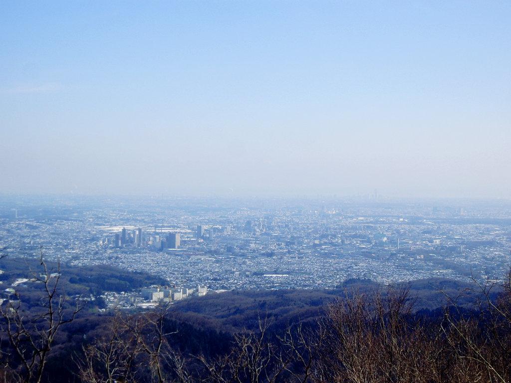 東京・冬の高尾山2013-7013