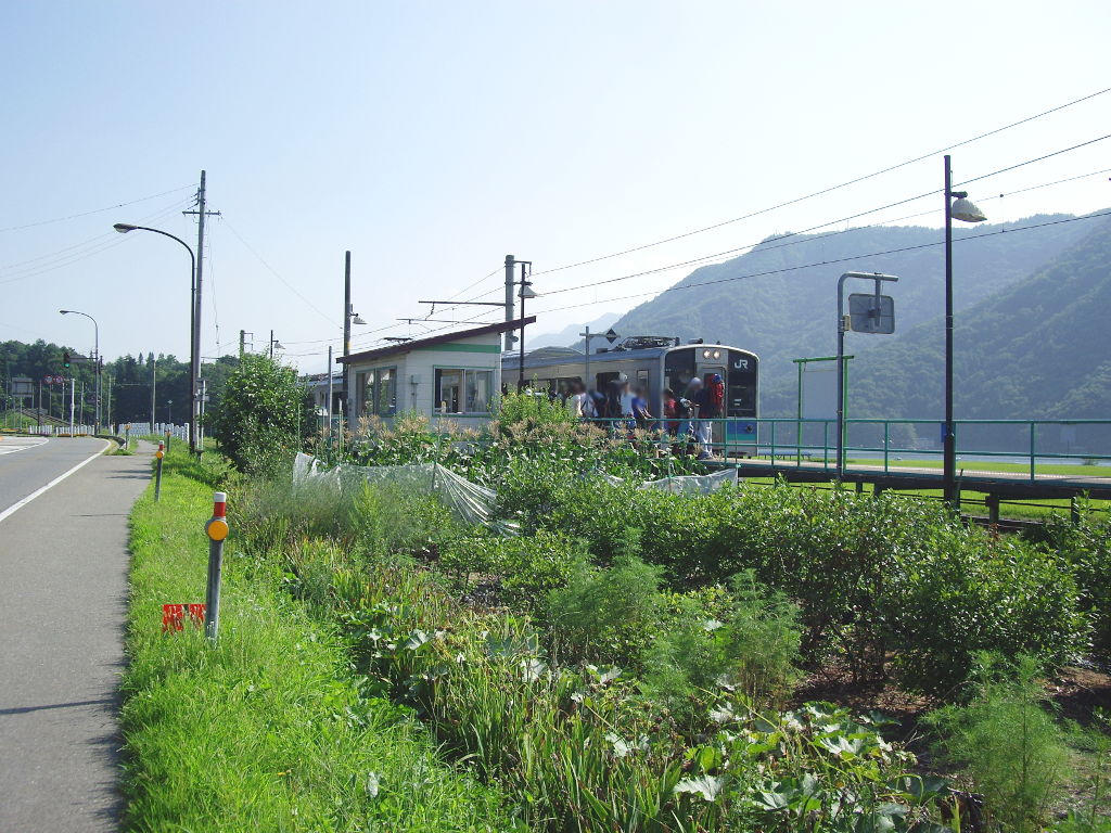 大糸線稲尾駅2013夏-1702