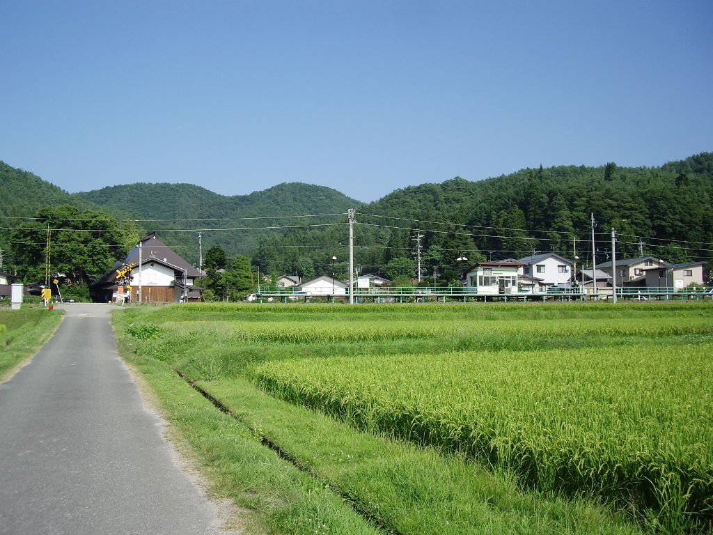 大糸線稲尾駅2013夏-1710