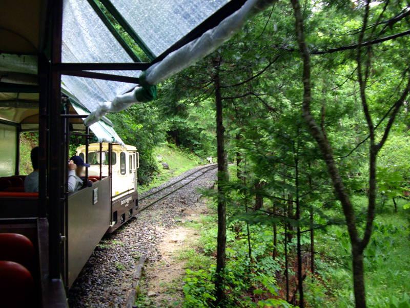木曽・赤沢森林鉄道2009その2-1203
