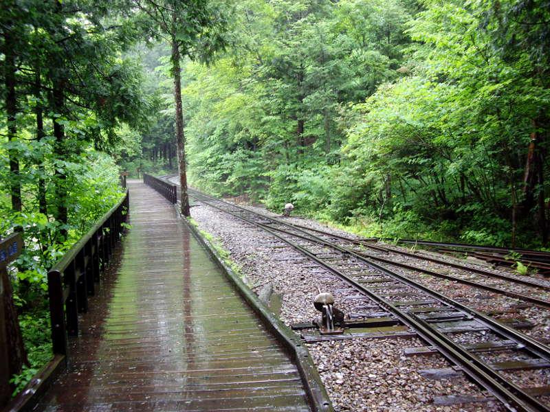 木曽・赤沢森林鉄道2009その2-1218