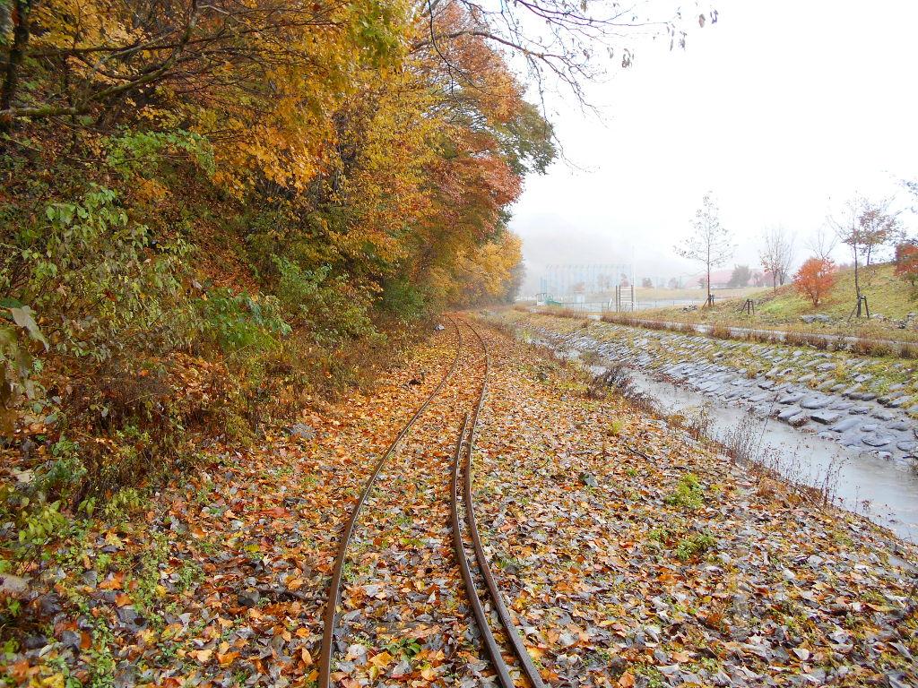 秋の木曽路2014-9731