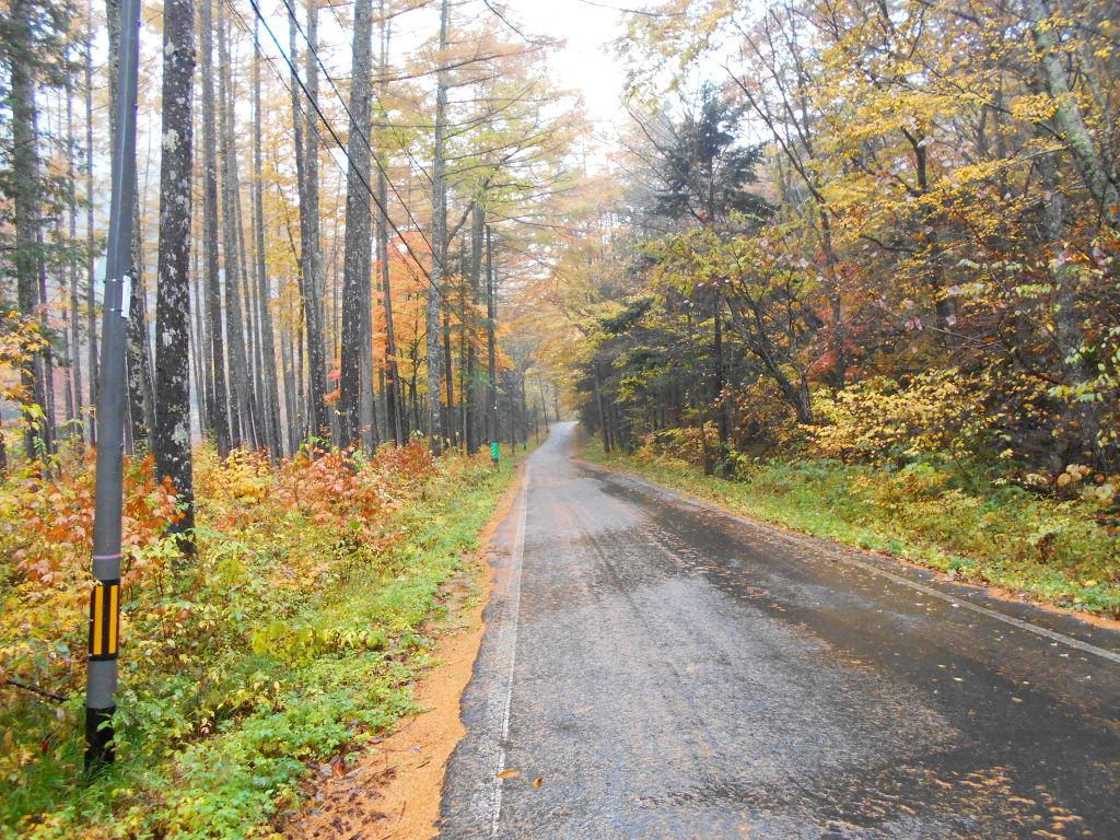 秋の木曽路2014-9802