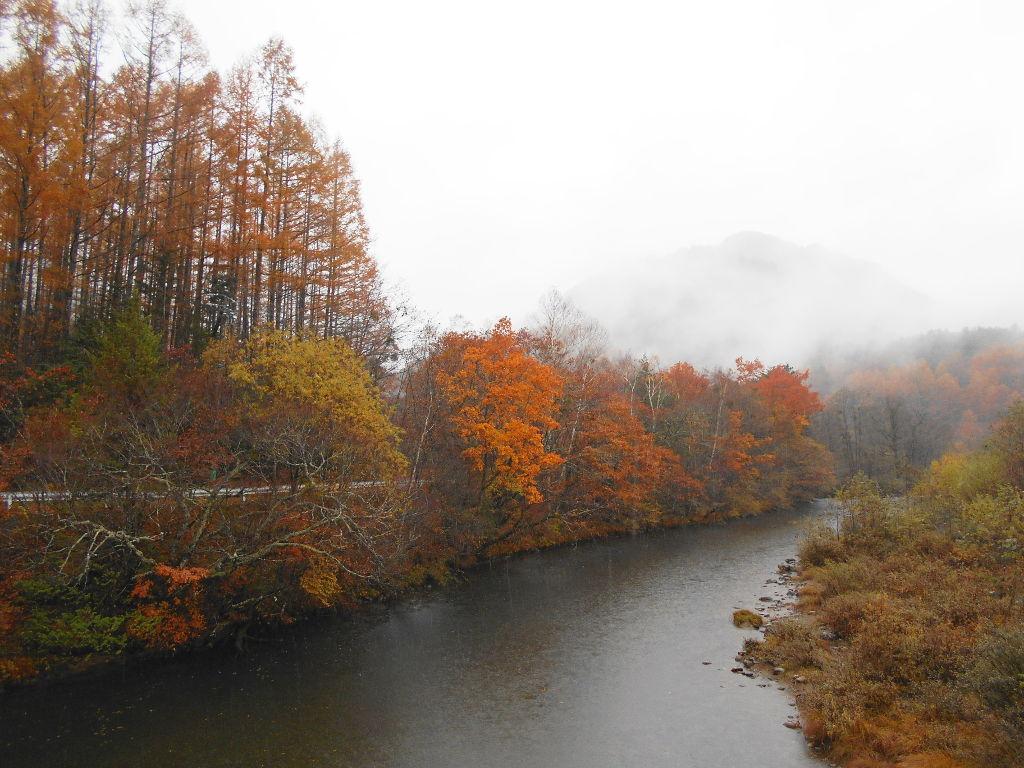 秋の木曽路2014-9820