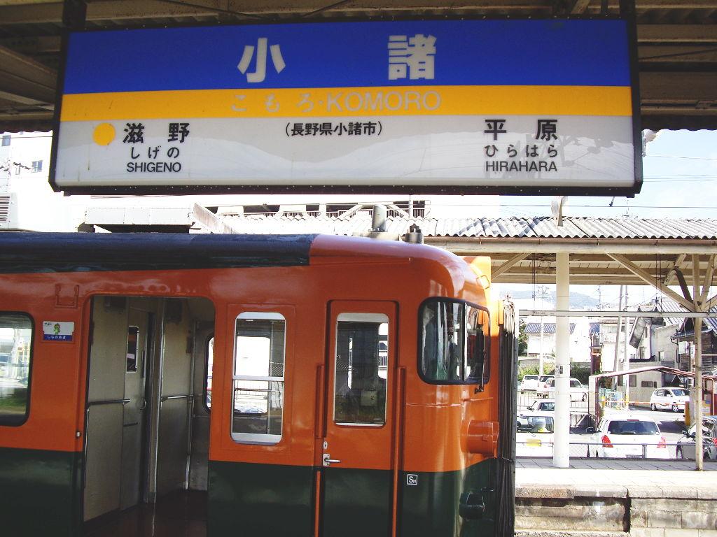 しなの鉄道169系湘南色2010その1-1117