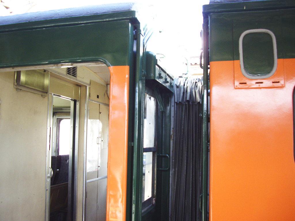 しなの鉄道169系湘南色2010その2-1217