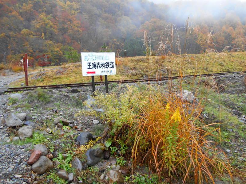 紅葉の木曽路・王滝村滝越2014-1801