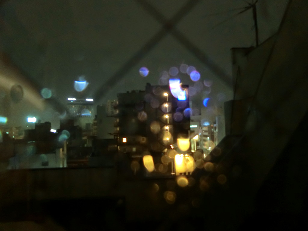 名鉄乗り回しの旅2018その7・小牧線-4704