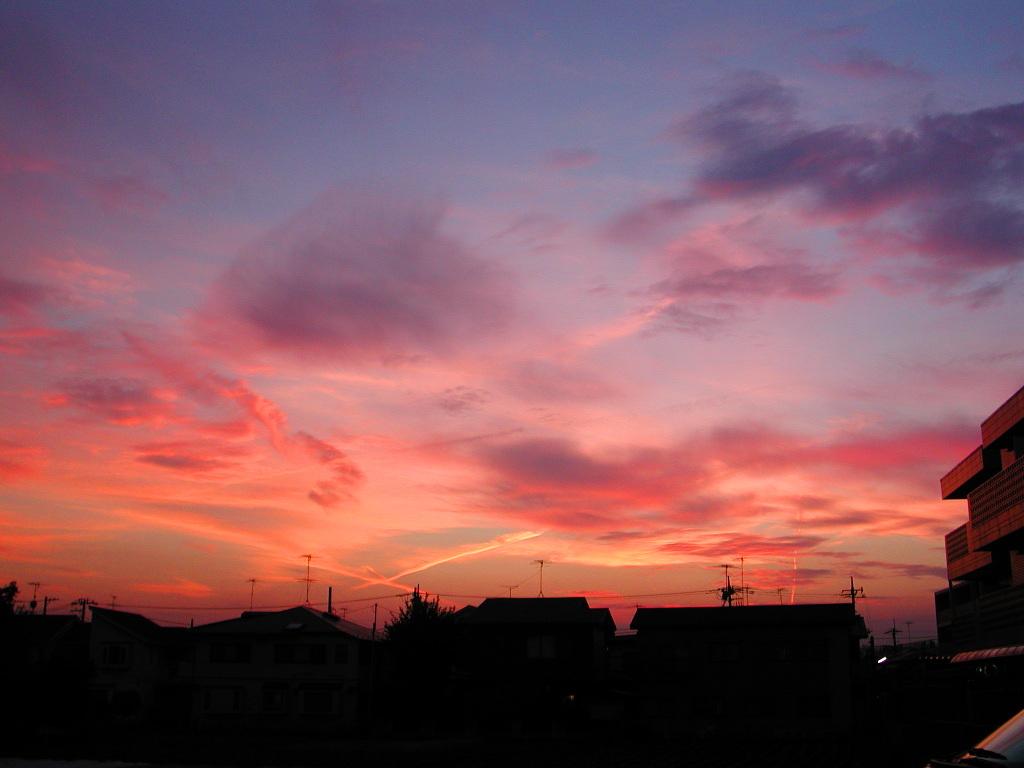 小田急線・和泉多摩川の鉄橋2005-1018