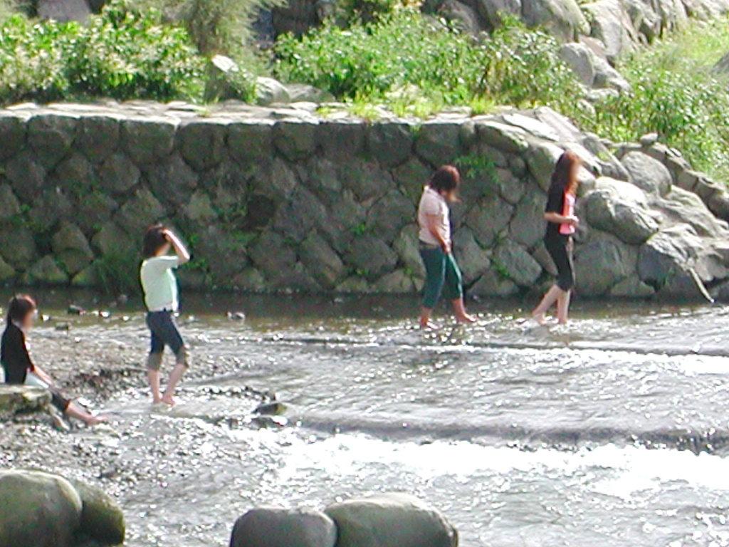 箱根・小田急ロマンスカーVSE・2006秋-1018
