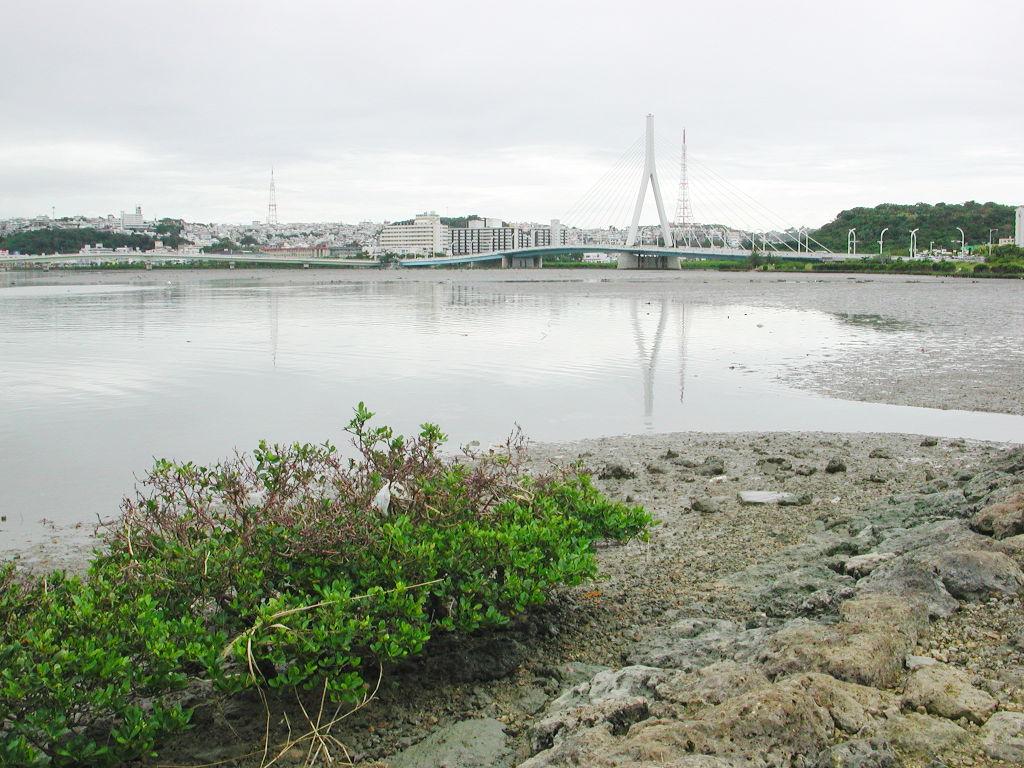 沖縄・那覇2006-1116