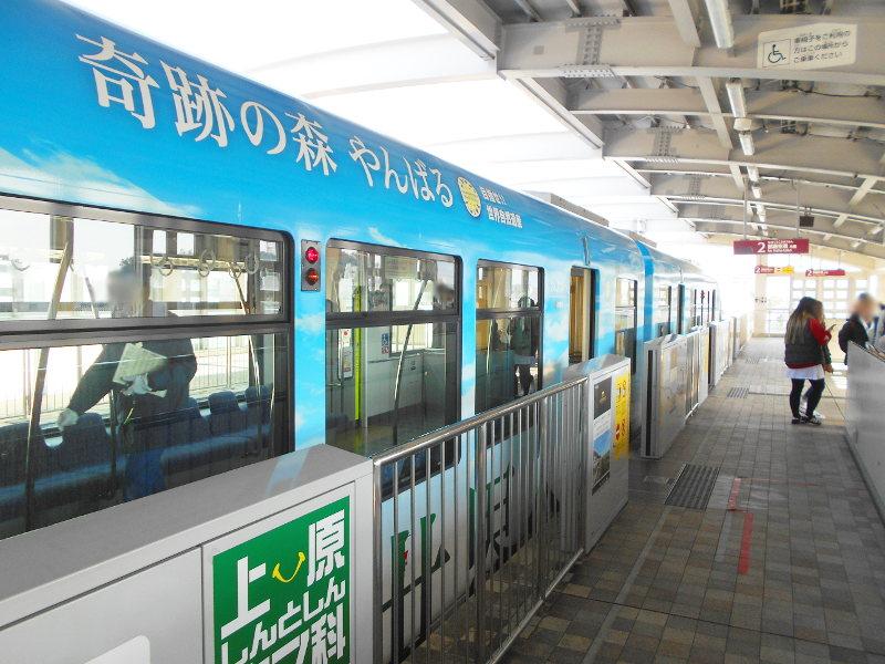 沖縄・那覇で年越し2018その3・首里への道-1315
