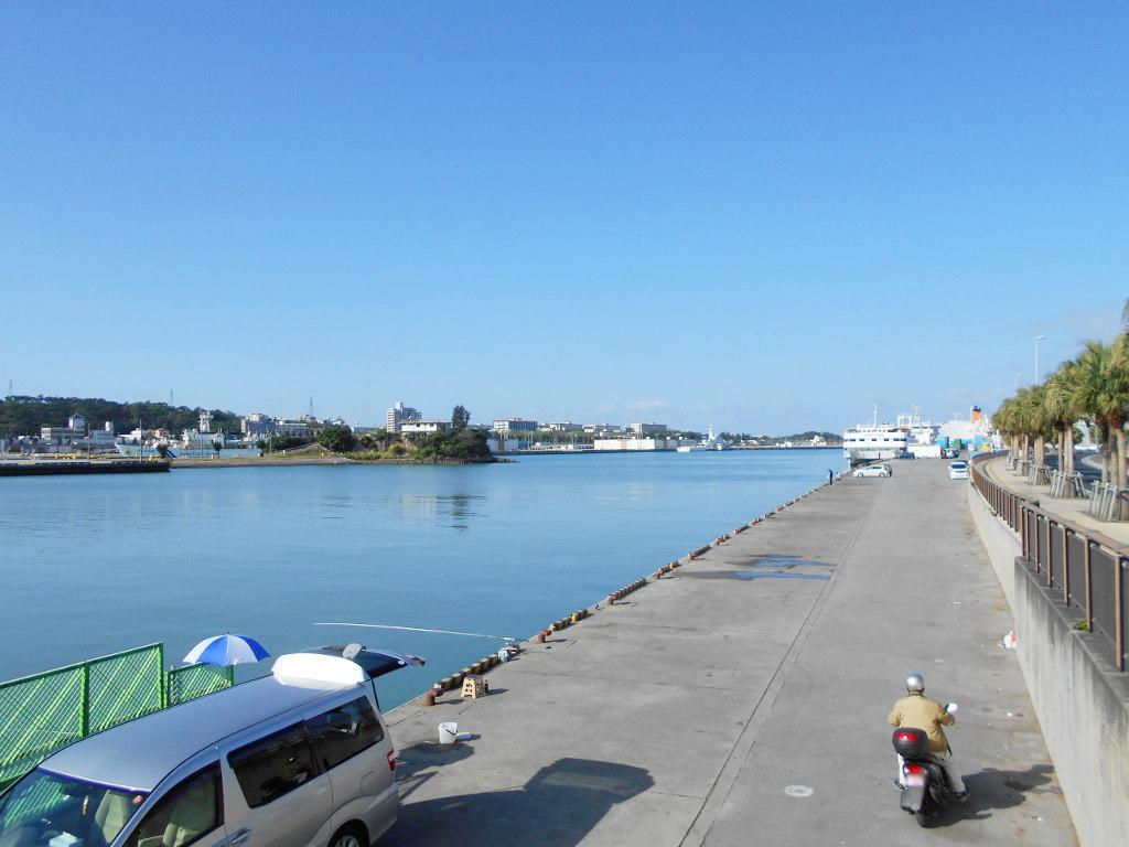 沖縄・那覇で年越し2018その10・湖畔をお散歩・漫湖-2007