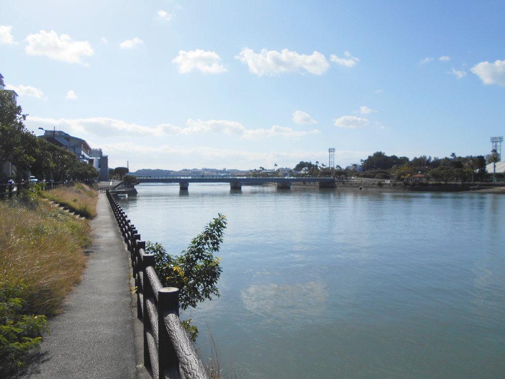 沖縄・那覇で年越し2018その10・湖畔をお散歩・漫湖-2013