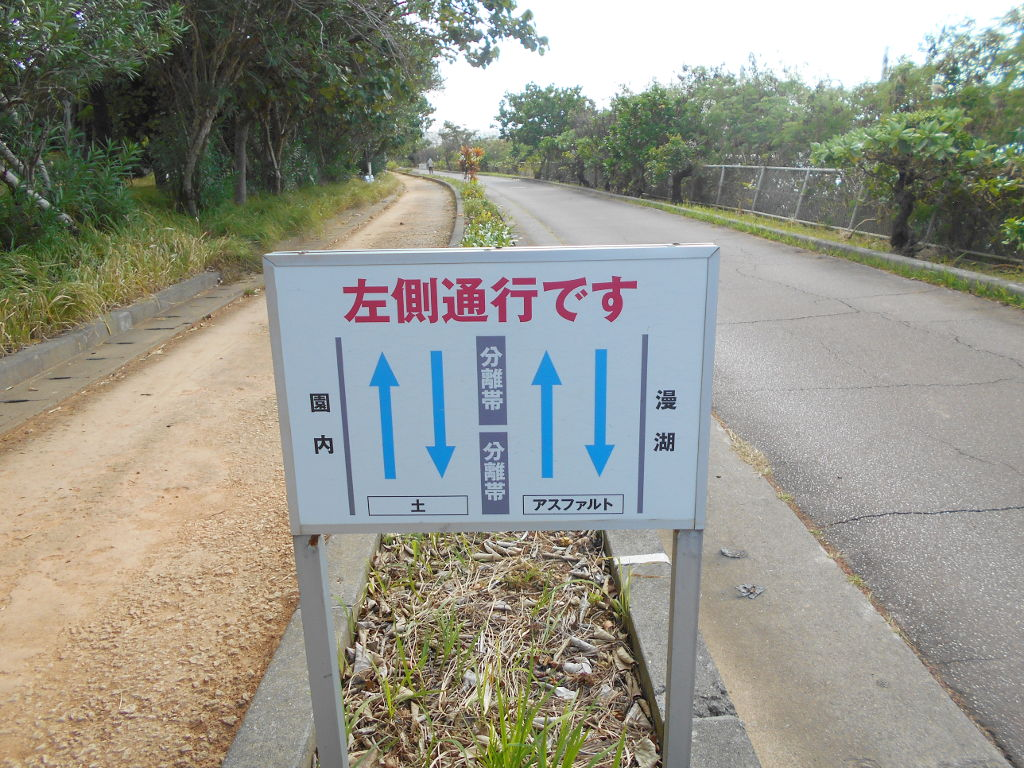 沖縄・那覇で年越し2018その10・湖畔をお散歩・漫湖-2019