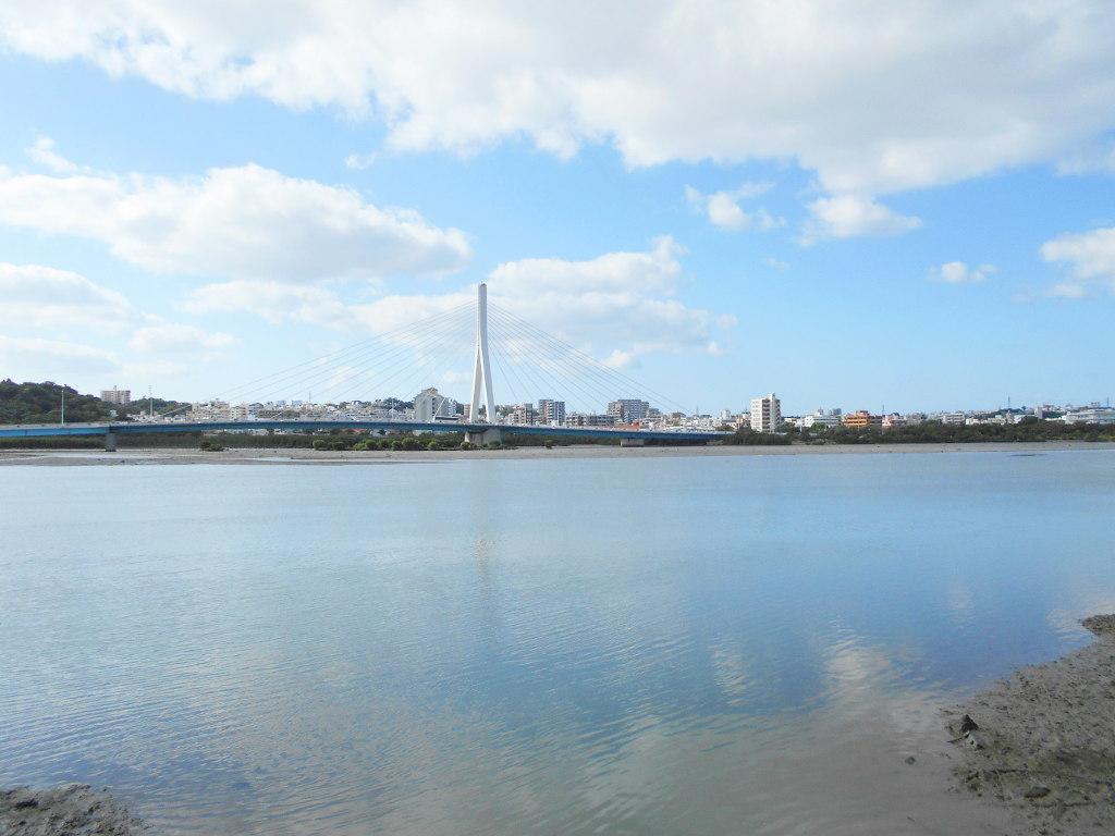 沖縄・那覇で年越し2018その10・湖畔をお散歩・漫湖-2026