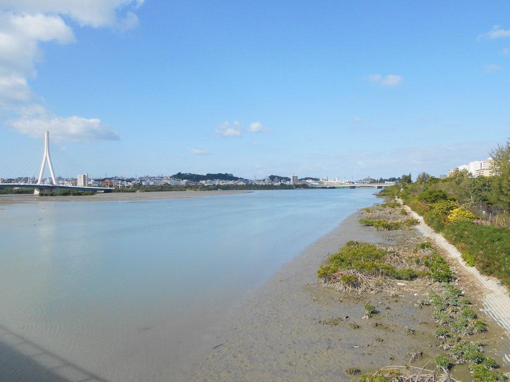 沖縄・那覇で年越し2018その10・湖畔をお散歩・漫湖-2030