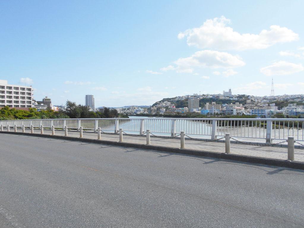 沖縄・那覇で年越し2018その10・湖畔をお散歩・漫湖-2032