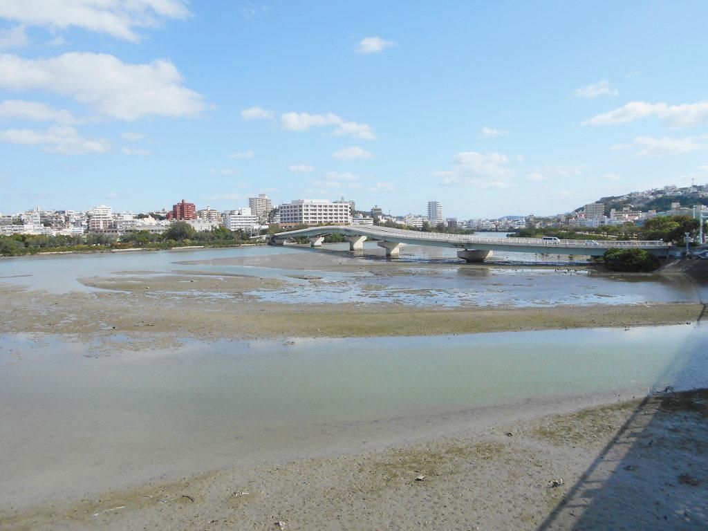 沖縄・那覇で年越し2018その11・湿地をお散歩・漫湖-2105