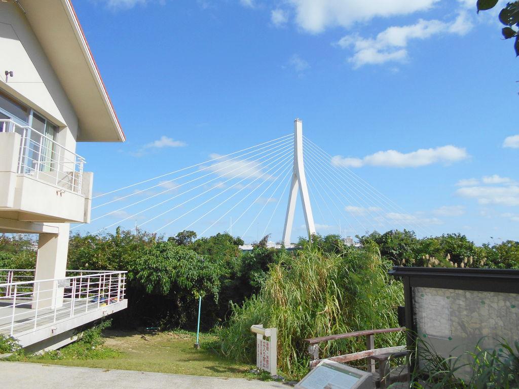 沖縄・那覇で年越し2018その11・湿地をお散歩・漫湖-2117