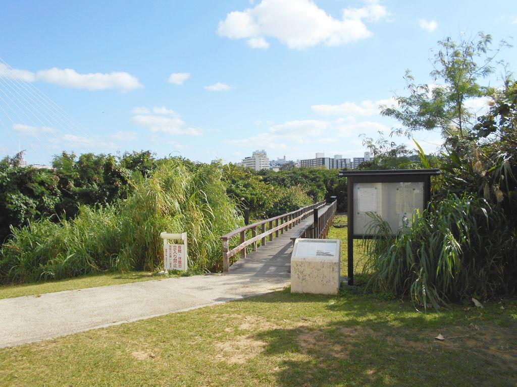沖縄・那覇で年越し2018その11・湿地をお散歩・漫湖-2118
