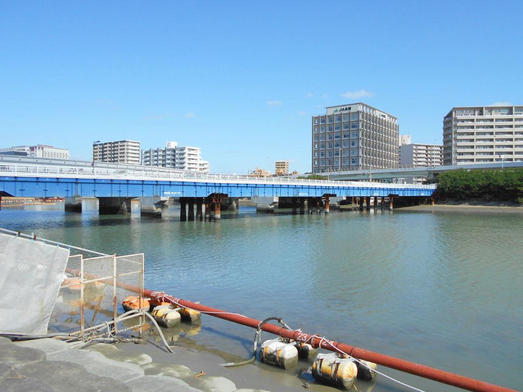 沖縄・那覇で年越し2018その11・湿地をお散歩・漫湖-2135