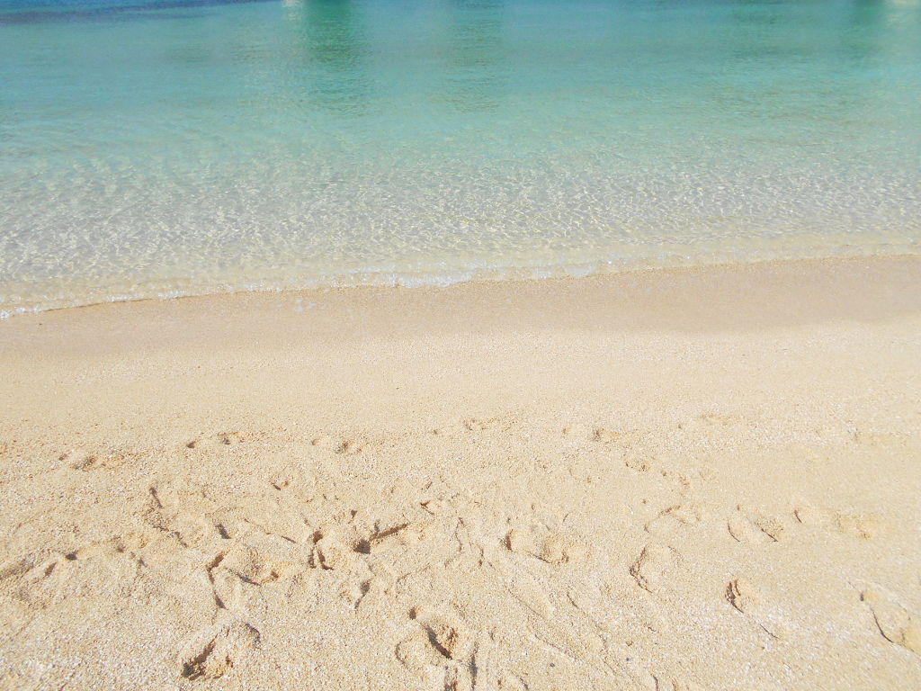 沖縄・那覇で年越し2018その14・波の上ビーチでオリオンビール-2409