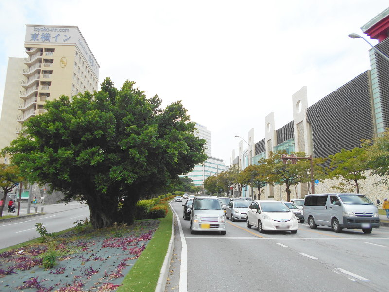 沖縄・那覇で年越し2018その15・おもろまち新都心と公設市場-2514