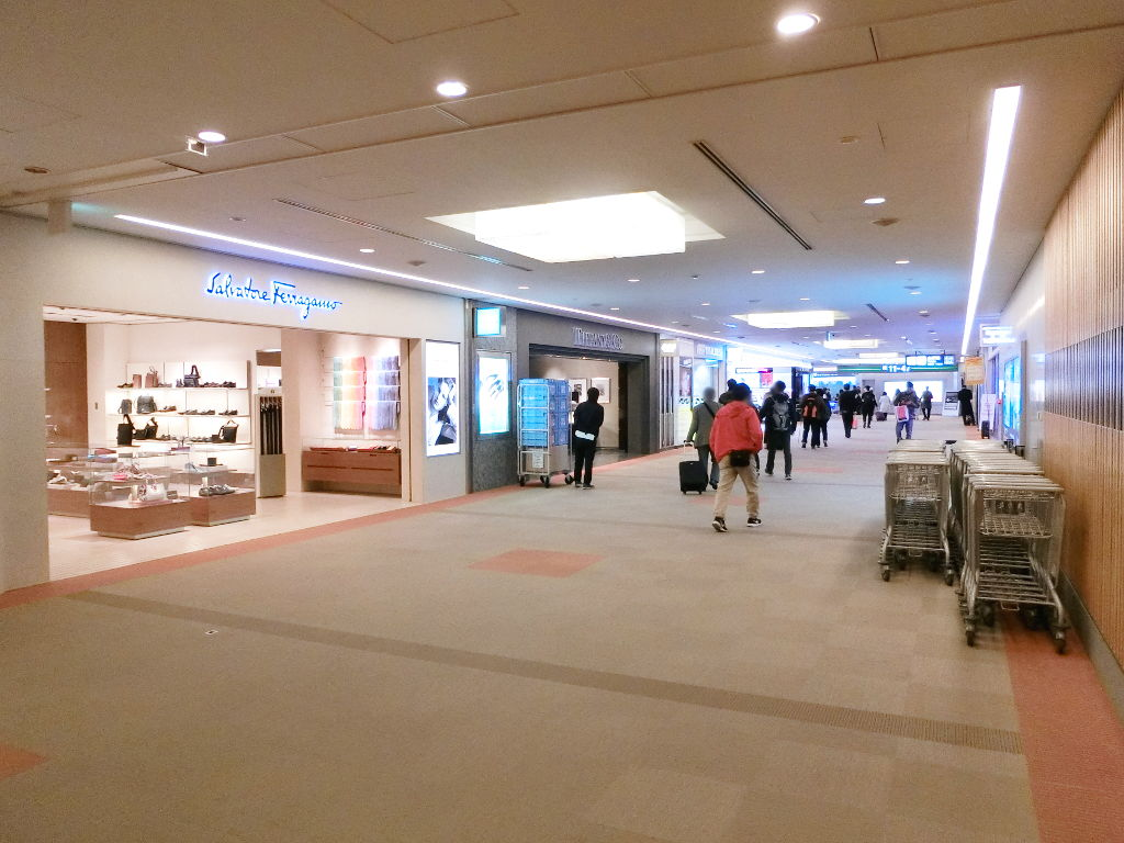 成田空港第1ターミナル2018春-1111