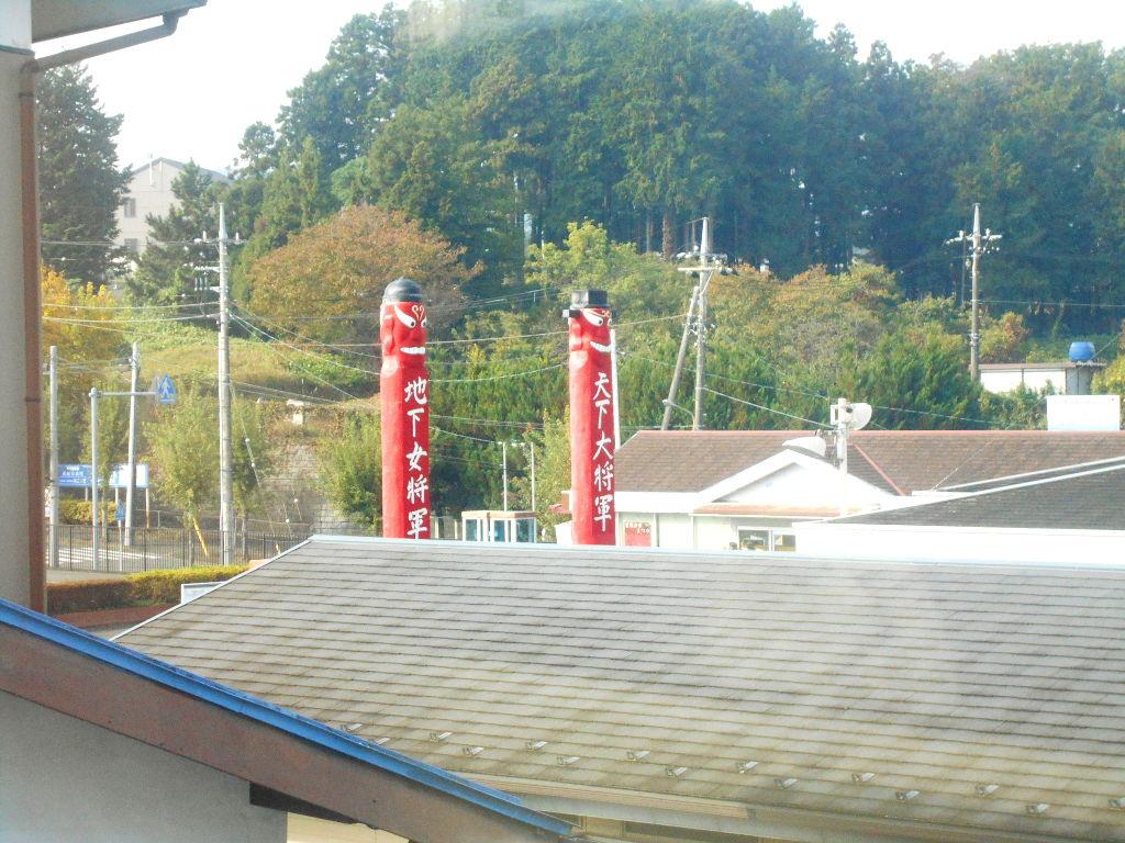 埼玉・高麗の巾着田2013春-1104