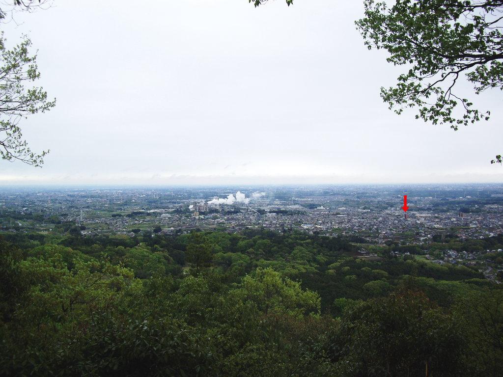 埼玉・高麗の巾着田2013春-1118