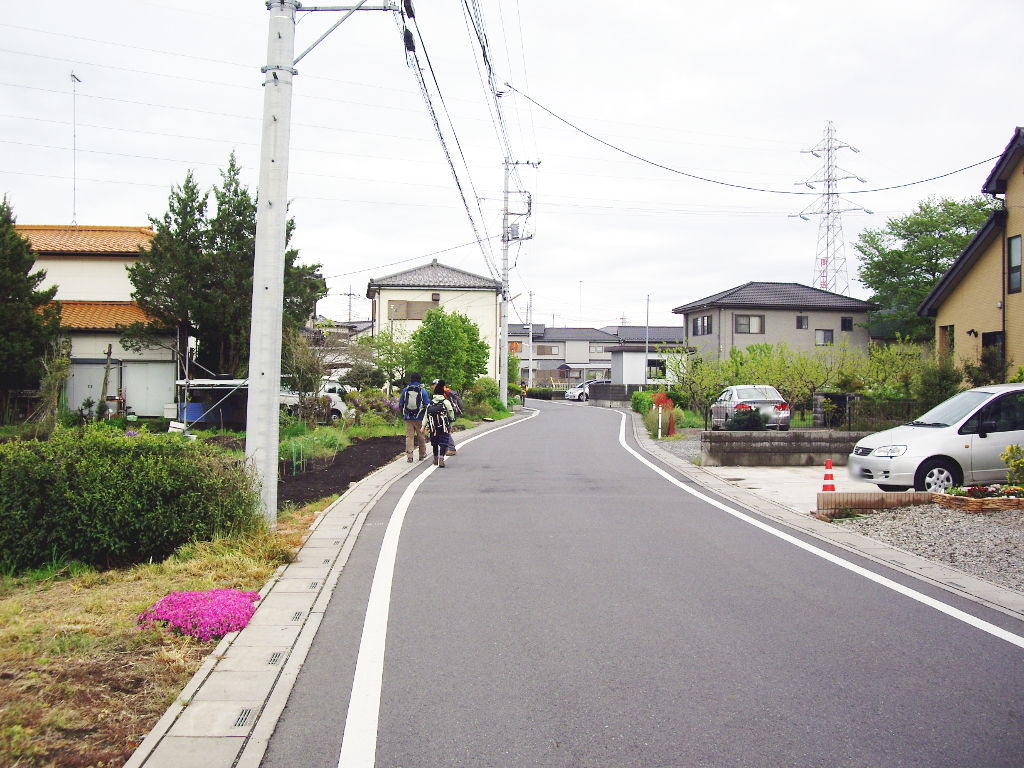 埼玉・高麗の巾着田2013春-1128