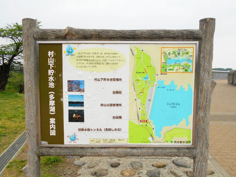 東京・多摩湖2016GW-5111