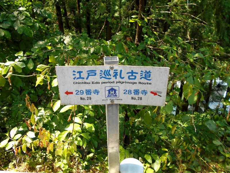 秩父・浦山ダム2016その1-9534