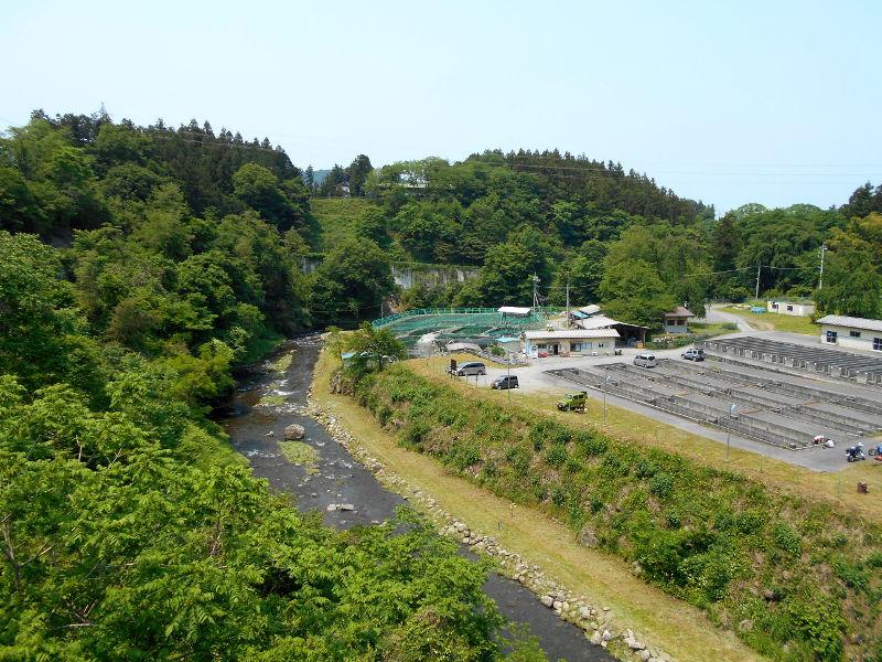 秩父・浦山ダム2016その2-9602