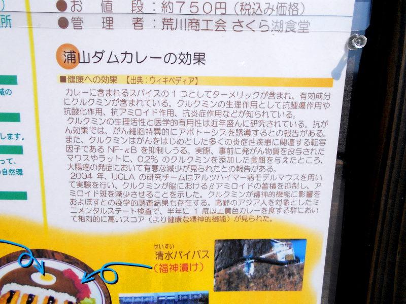 秩父・浦山ダム2016その3・ダムのてっぺんを探検-9718