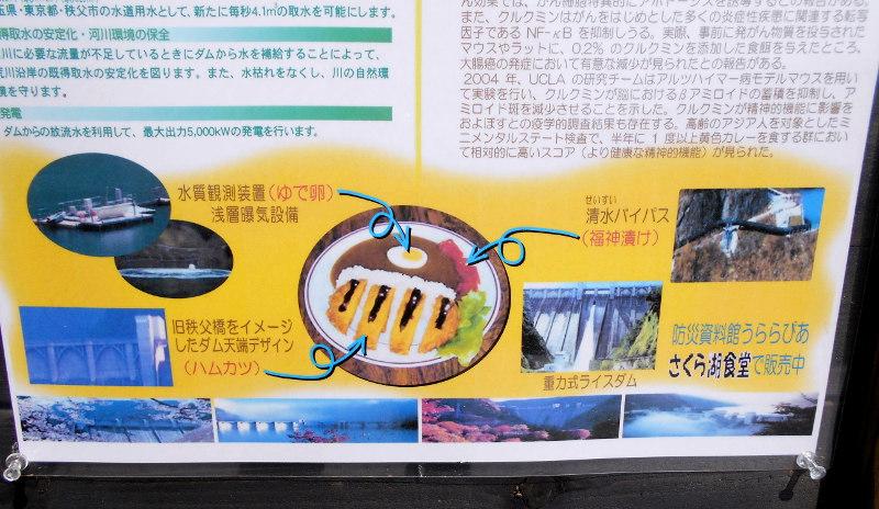 秩父・浦山ダム2016その3・ダムのてっぺんを探検-9719