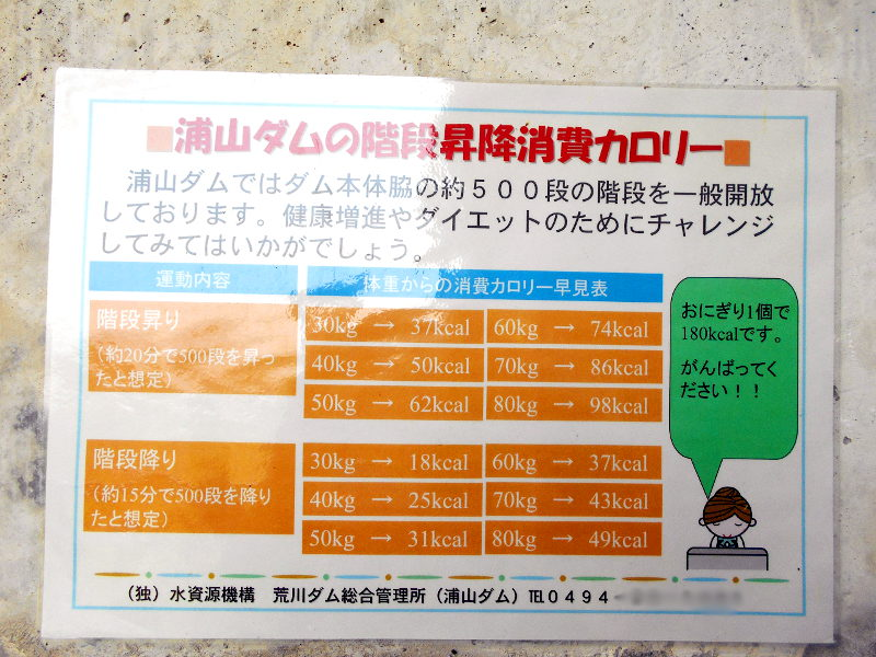 秩父・浦山ダム2016その4・ダムの階段との戦い-9804