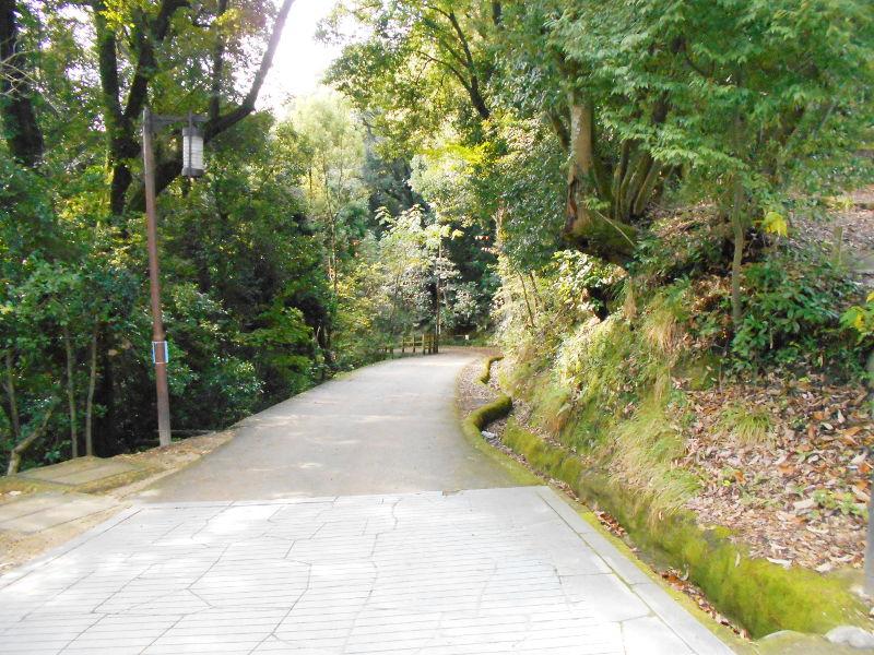 行くぞ!松山2016冬その15・松山城-後編-8523