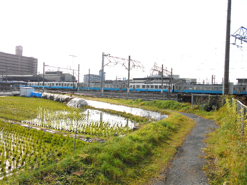 行くぞ!松山2016冬その18・松山駅のコンテナと気動車-8812