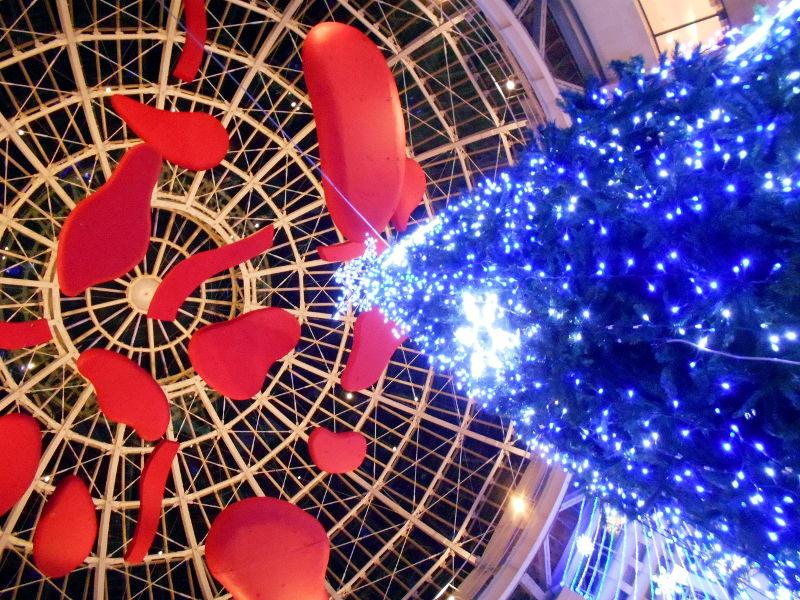 行くぞ!松山2016冬その20・クリスマスの高松アーケード街-9031