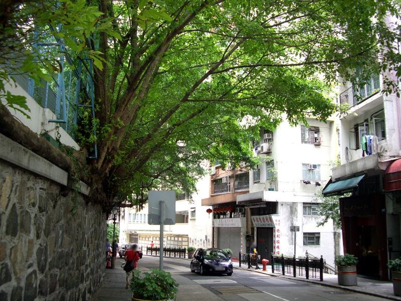 シルクロード一人旅「我的長征2006」その2・香港・観光とグルメ-0220