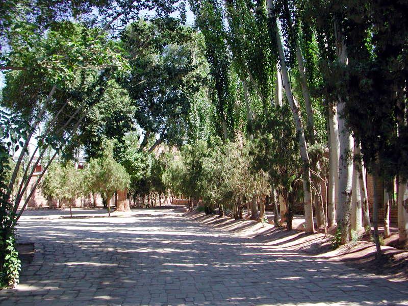 シルクロード一人旅「我的長征2006」その9・カシュガル・香妃墓と並木道-0907